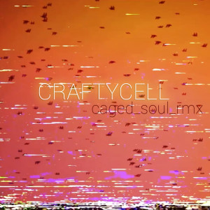 craftycell_CAGED_SOUL_cover